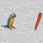 parrot carrot by w1ckerman