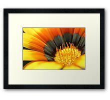 Warmth of Winter Framed Print