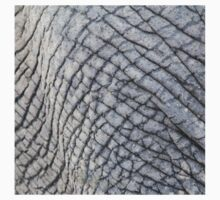 Elephant Skin - Natural Patterns and Textures Kids Clothes