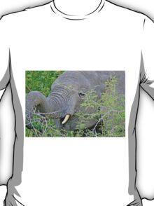 Elephant Hunger - Wildlife Happiness  T-Shirt