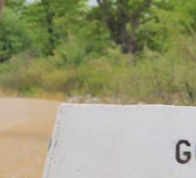 Elephant - Tourists go Slow Sticker