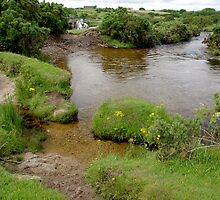De Lank River by M G  Pettett