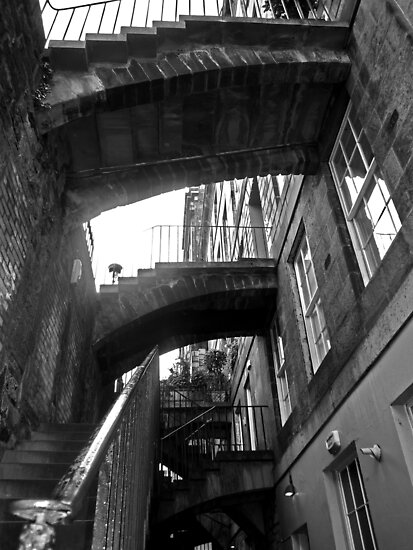 Stairing Close At You....... by Andrew Ness - www.nessphotography.com