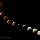 Total Lunar Eclipse 2014 by Jayson Gaskell