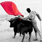 Matador and Bull. 2 by craigto