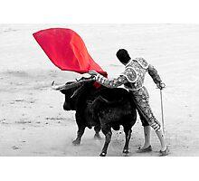 Matador and Bull. 2 Photographic Print