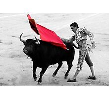 Matador and Bull. 5 Photographic Print