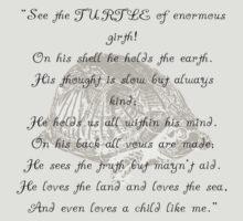 Turtle Beam Rhyme by Braelove