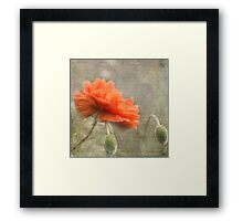 100 Years - In memory of fallen soldiers WW1 Framed Print