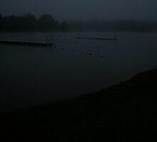 misty lake 2 by Danielle  Kay