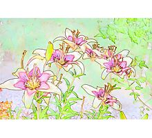 Pink And White Lilies - Digital Watercolor  Photographic Print