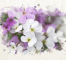 Wildflower Watercolor Art by Christina Rollo