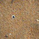 Sand Eye by OZImage