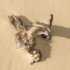 Wind Swept Life by OZImage