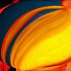 Fire Through Glass by Stan Owen