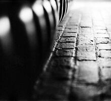 Sit by Jodie Noonan