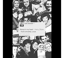 larry stylinson collage  Photographic Print