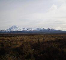 Mt. Tongariro & Mt. Ngauruhoe by elizabethrose05
