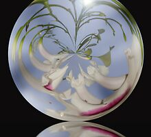 Glass Sphere With Reflection by Squealia