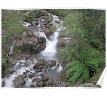 Little River Cascades Poster