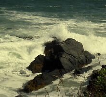 Crashing Into The Rocky Shore by 1greenthumb