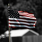 American Flag by Brad Staggs