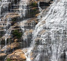 Wenthworth Falls, Blue Mountains by Blue Gum Pictures