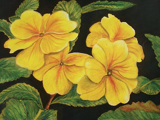 Primroses in the Dark  by © Linda Callaghan