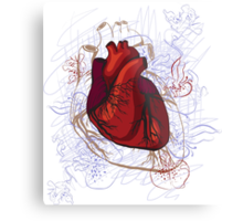 drawing of the heart, anatomical Metal Print