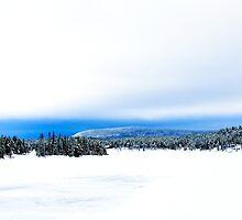 Jukkasjärvi Northern Sweden by Nicola  Mulryan