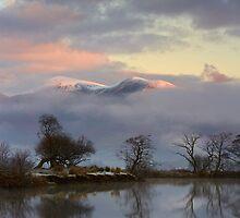 Cool Dawn by Jeanie
