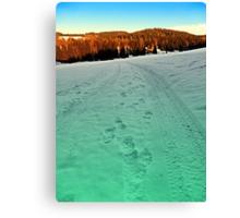 Winter hiking near the border | landscape photography Canvas Print