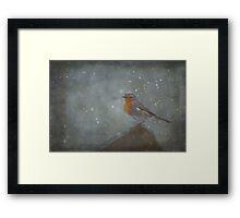 Mr Robins Snowstorm - Textured Framed Print