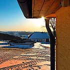 Sunny winter afternoon at the farm   landscape photography by Patrick Jobst
