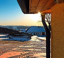 Sunny winter afternoon at the farm | landscape photography by Patrick Jobst
