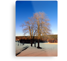 Cross with guardian trees in winter wonderland | landscape photography Metal Print