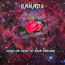 Hold on tight to your Dreams in your own XANADU by richardredhawk