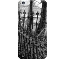 Life and Death entwined iPhone Case/Skin