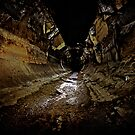 Why You Never Wallpaper a Sewer..... by Reg  Lyons