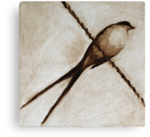 bird on a wire painting in browns Canvas Print