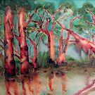 Litchfield Park Australia by Lorna Gerard