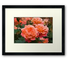 Happy, Fragrant Roses - Impressions of June Framed Print