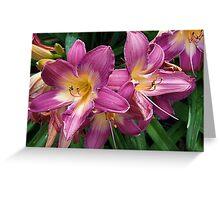 Flashy Lilies Greeting Card
