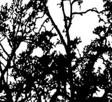 The Creepy Tree Sticker