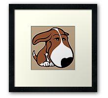 Soppy Bull Terrier Brown and White Coat Framed Print