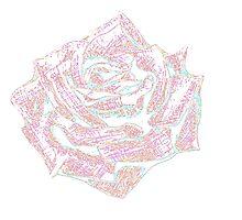 Pink Rose by HeatherMel