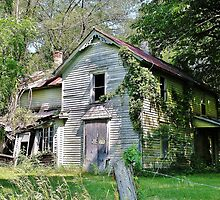 Faded Charms Along the Wisconsin River by Martha Sherman
