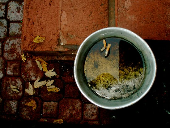 Fall Cigarette  by Justin  Robertson