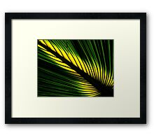 Lighted Palm Framed Print