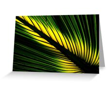 Lighted Palm Greeting Card